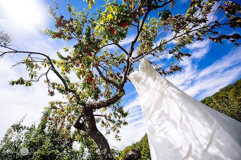 Western MA Farm Wedding by Bethany and Dan Photography 0001.JPG