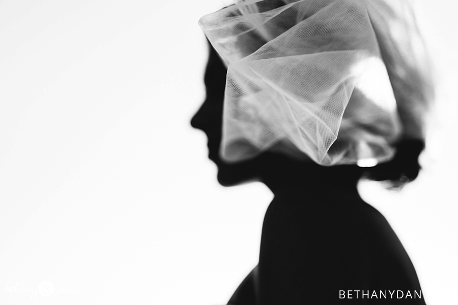The bride and veil sillouette