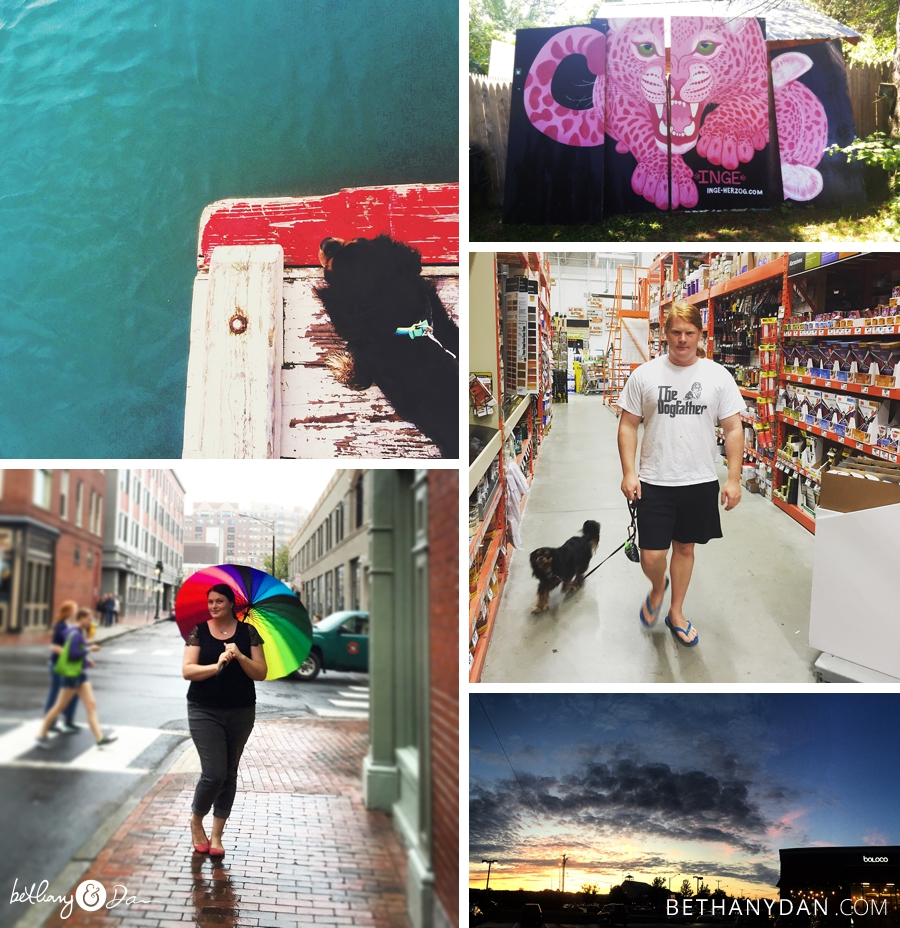 A collage of images from August