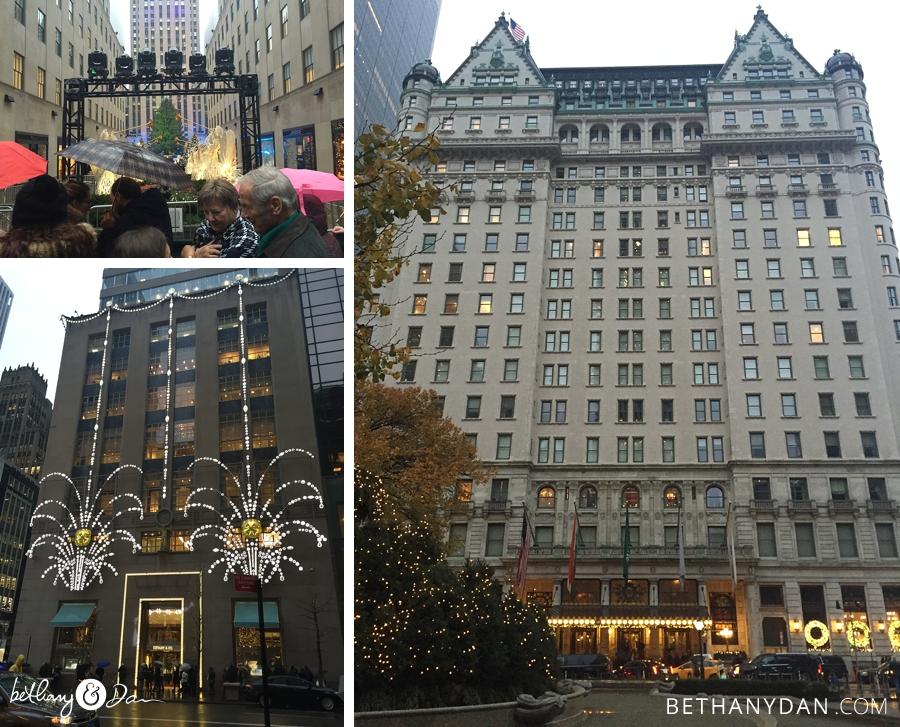 NYC Dec 1 and 2 2015 0063